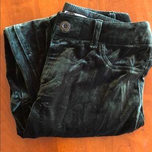 Cato dark green faux velvet skinny pant